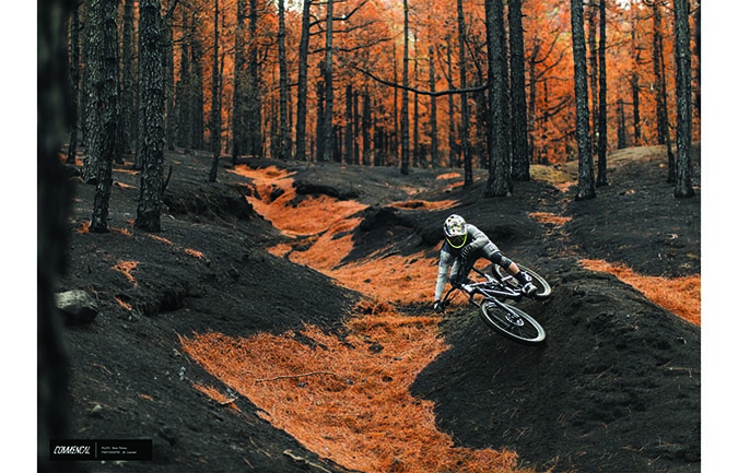FOTODRUCK : REMI THIRION – BURNT PALMA FOREST